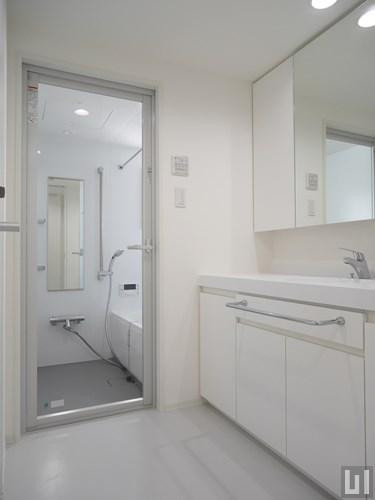 1LDK 42.66㎡タイプ - 洗面室