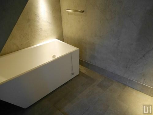 1LDK 53.06㎡タイプ - バスルーム