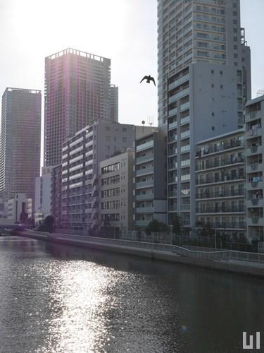 コンフォリア芝浦 - マンション外観