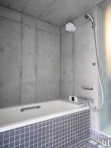 1LDK 97.61㎡タイプ - バスルーム