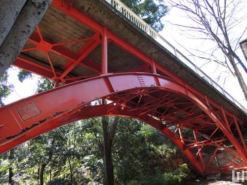 等々力渓谷公園 ゴルフ橋