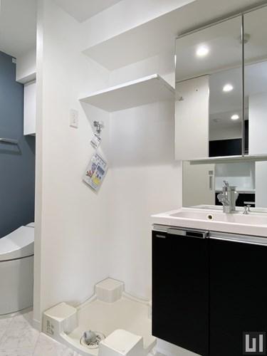 C2タイプ - 洗面室
