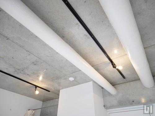 1K 23.6㎡タイプ - 洋室・天井照明