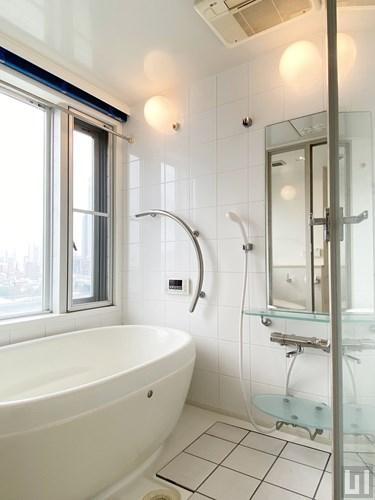 1LDK 57.59㎡タイプ - バスルーム