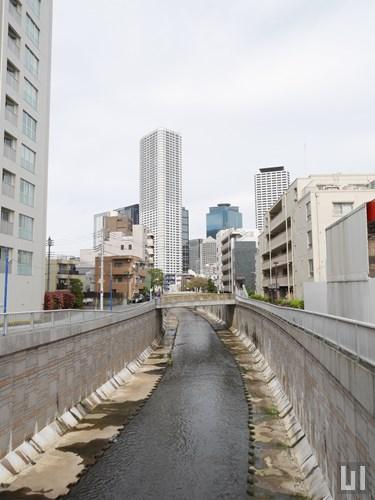 神田川 - 長者橋から