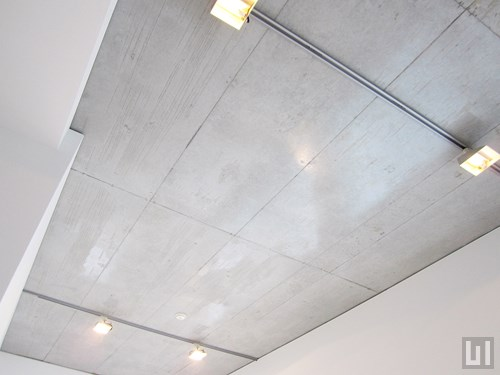1R 38.38㎡タイプ - 天井・照明