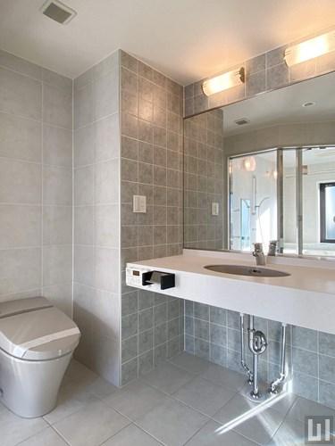 1LDK 68.11㎡タイプ - 洗面室