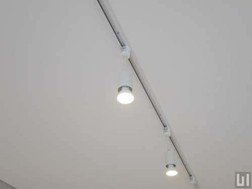 2LDK 60.88㎡タイプ - リビング・照明