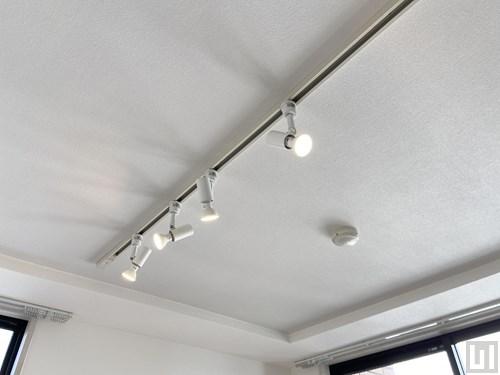 1R 21.9㎡タイプ - 洋室・照明