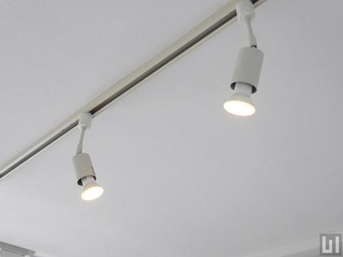 1R 25.23㎡タイプ - 洋室・照明