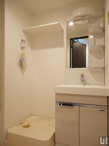 Dmタイプ - 洗面室