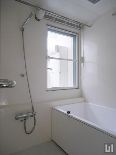 1LDK 41.5㎡タイプ - バスルーム