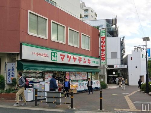マツヤデンキ 大岡山店