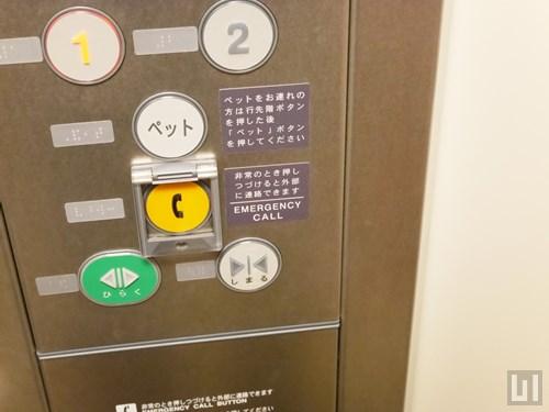 エレベーターもペット対応です