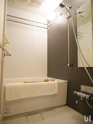 M3タイプ - バスルーム