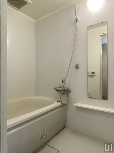 1R 49.06㎡タイプ - バスルーム