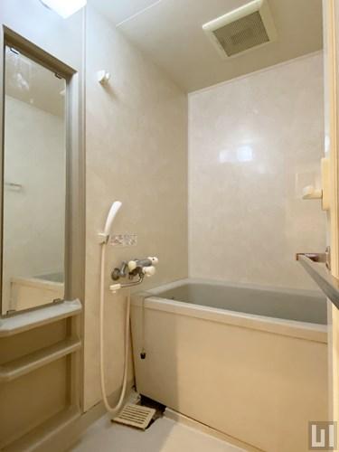 Cタイプ・通常内装 - バスルーム