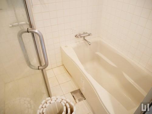 1LDK 32.73㎡タイプ - バスルーム