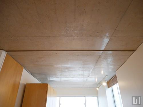 1LDK 48.52㎡タイプ - リビング・洋室境界部分天井