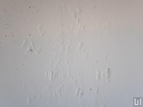 1R 30.69㎡タイプ - 洋室・壁
