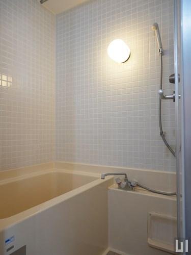 1LDK 65.79㎡タイプ - バスルーム