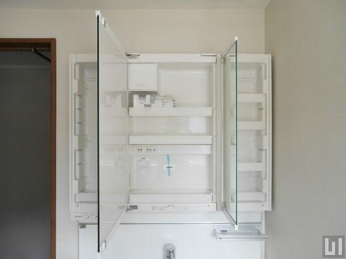 1LDK 58.74㎡タイプ - 洗面台・鏡裏収納