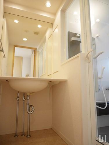 501号室 - 洗面台