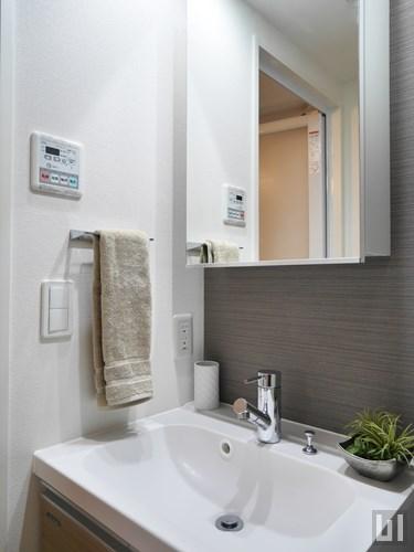 Dタイプ・モデルルーム - 洗面台