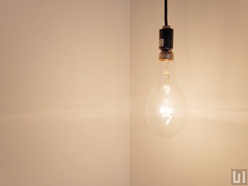 リノベーション1R 27.36㎡タイプ - 洋室・照明